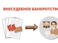 Подробнее: Памятка о процедуре внесудебного банкротства